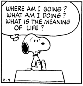 snoopy meaning of life